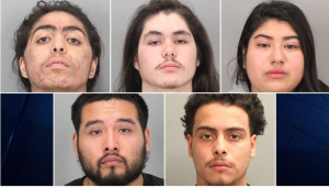 Diversity Is Our Strength: Teen-powered San Jose gang busted with 16 arrests…