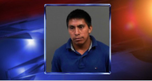 128th Illegal immigrant child sex abuser of 2019 thread.