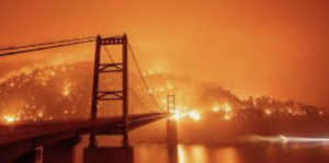 Study Shows 84% of Wildfires Caused by Humans. (What does this tell you about the fires in CA, OR, and WA?)